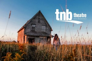 TNB's new season features a wide and diverse range of theatre.